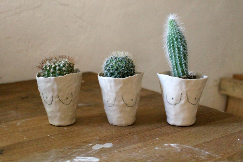Booby Cactus Planters